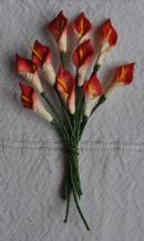 RED WHITE CALLA LILY aka ARUM LILY Mulberry Paper Flowers